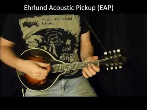Ehrlund Acoustic Pickup vs Ehrlund Acoustic Pickup