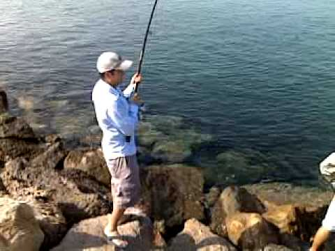 Ajmale free mp4 video download 1 for Fishing kings free