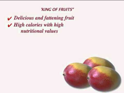 Fruit Break - Nutritional Benefits Of Apple - Part 2 - Tips For Healthy Eating