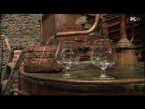 Sept siècles d'histoire au Domaine d'Ognoas