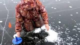 рыбалка в болгарии на карпа