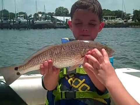 Kids Fishing Capt. Brook Wallace | Sarasota Fishing Charters