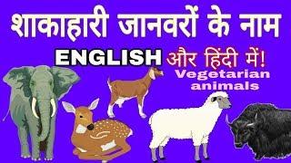 शाकाहारी जानवरों के नाम हिन्दी और इंग्लिश में  vegetarian animals  