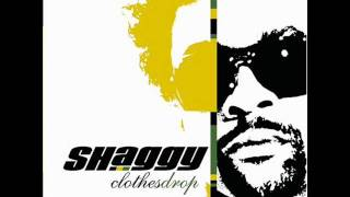 Watch Shaggy Letter To My Kids video