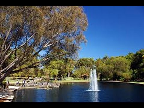 Королевский парк  (Kings  Park  in the city of Perth,  Western Australia)