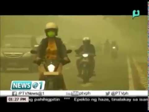 Climate change chair: DFA, dapat makipag-ugnayan sa mga Southeast Asian countries ukol sa haze