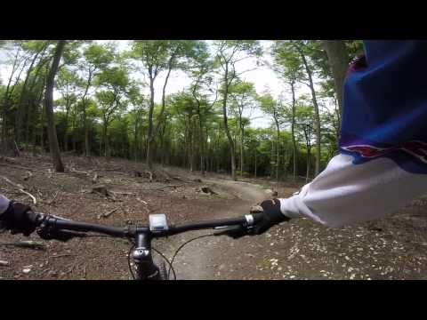 Queen Elizabeth Country park. MTB trail red