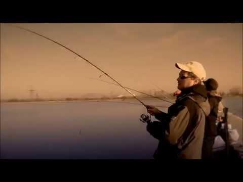 Ловля судака на джиг с берега zander fishing