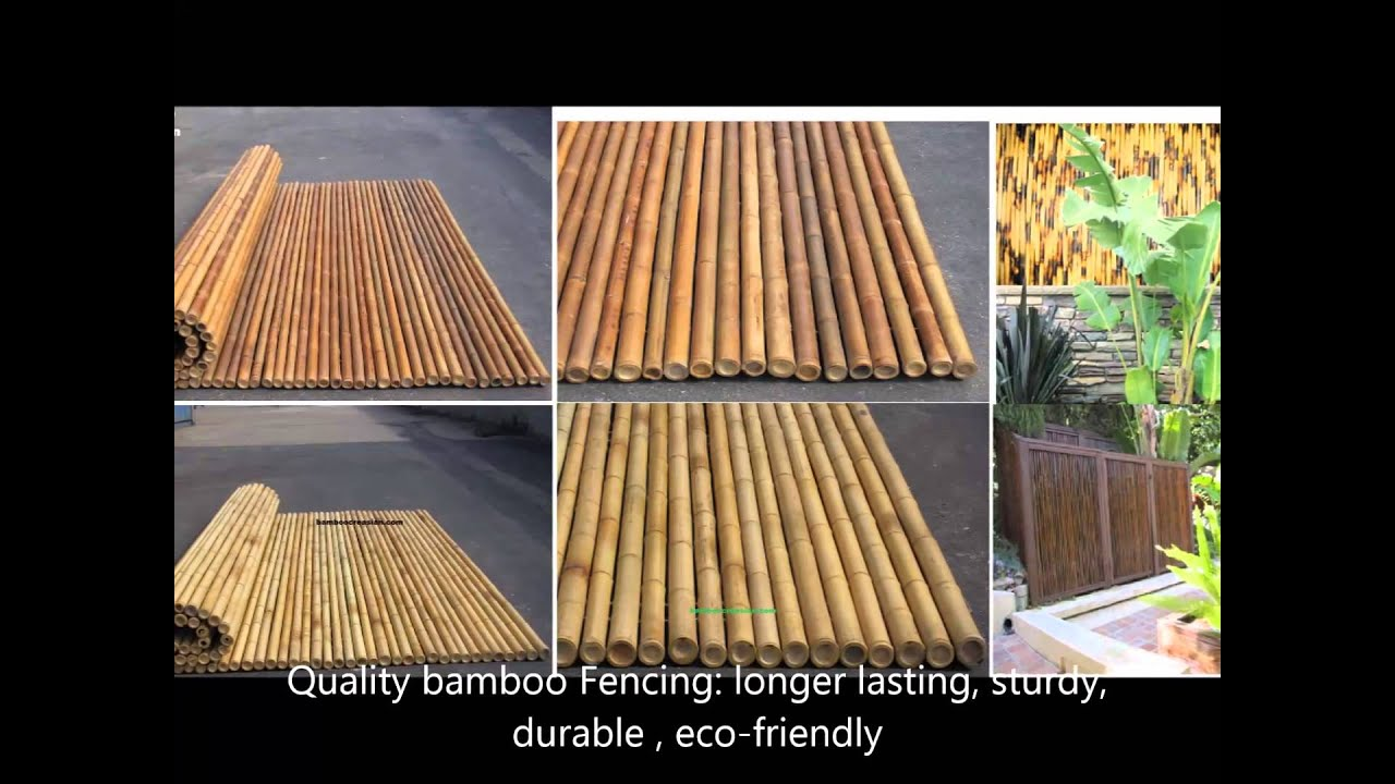 1 A Split Ted Bamboo Poles Basic How To Bamboo Splitting