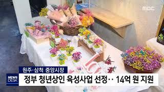 원주·삼척 중앙시장, 청년 육성사업 선정