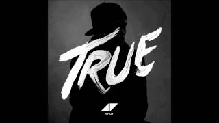Watch Avicii Long Road To Hell video