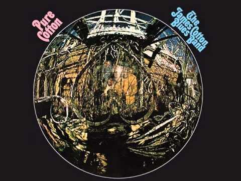 The James Cotton Blues Band - Fallin' Rain