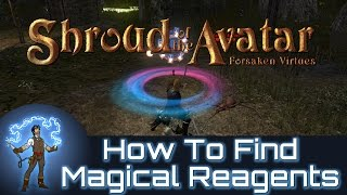 Shroud of the Avatar How To Find And Identify Magical Reagents