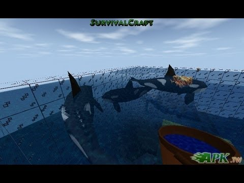 Survivalcraft How To Make A Orcas Zoo On Sea 殺人鯨 Youtube