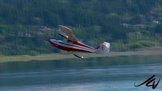 From RCMP Police dogs to model jet airplanes, we got them -  YouTube