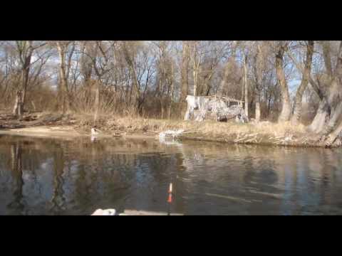 рыбалка в запорожье в плавнях