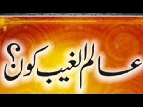 Shoaib raza bijnori exposed by mufti saalim khan ishaati