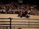 Parelli Natural Horsemanship NEC UK 2008