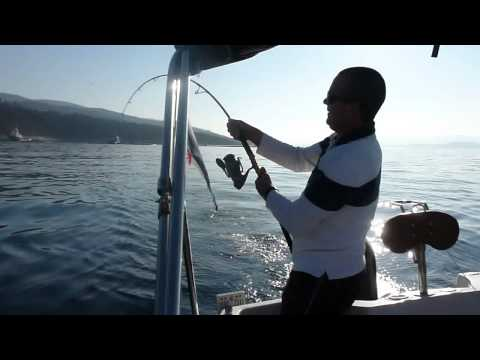 ARGOLA CHARTER - jigging for bluefin tuna.wmv