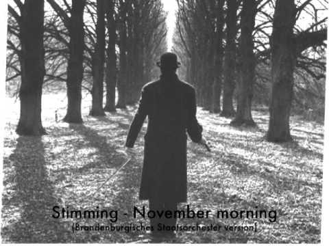 Stimming - November Morning (Brandenburgisches Staatsorchester Version)