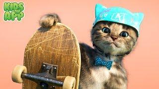 Little Kitten Preschool - Early learning for children (Fox and Sheep GmbH) - Best App For Kids