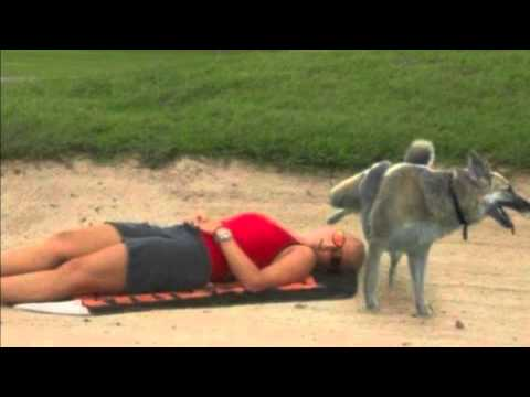 Girl Drink Dog Piss Videos - Free Porn Videos - HEAVY-R