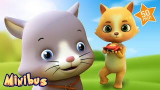 Baby Cat Song & Nursery Rhymes for Children | Kids Songs to Dance Playlist