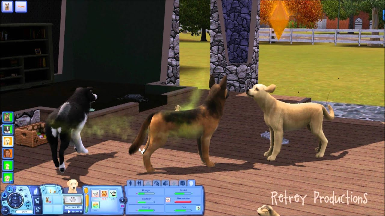 Cat And Dog Mixed Breed Sims