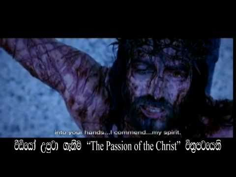 Mal Pokurak - New Sinhala Catholic Song - Lakith Shyaman video