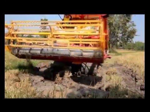 รถเกี่ยวนวดข้าวเกษตรพัฒนา. avi