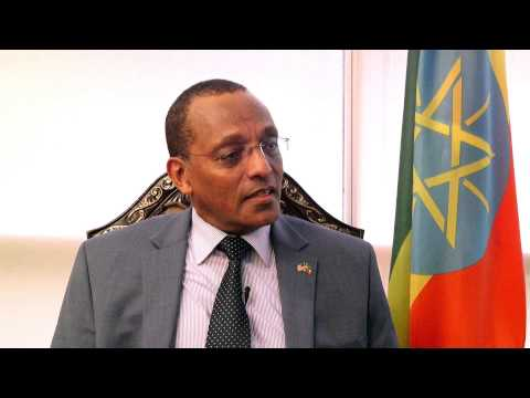 Amb. Girma Birru's interview about President Obama's visit to Ethiopia