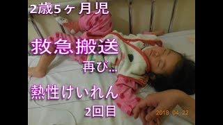 2-year-old 5-month, emergency transportation, again ... the second episode of febrile convulsion