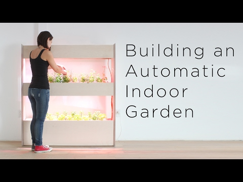 Setting Up an Automatic Indoor Garden | Customizing a Click and Grow system