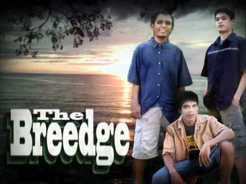reason(reggae) - the breedge