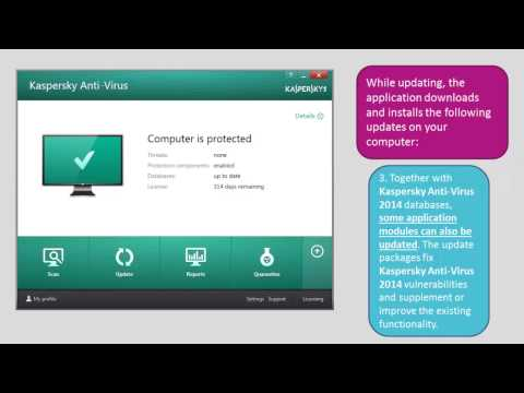 How to update anti-virus databases of Kaspersky Anti-Virus 2014
