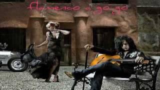 Steve Stevens - Flamenco.a.go.go