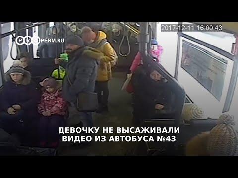Видео из автобуса №43