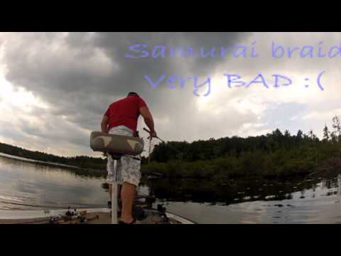 Bass Fishing new york Topwater/Pitching