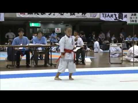 Shotokan Karate Japan - Kata Empi video