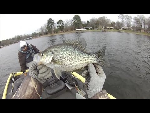 Crappie Fishing Toledo Bend Mar 14 2014