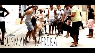 Download Ousman - Tafrika [Official Video] 3Gp Mp4