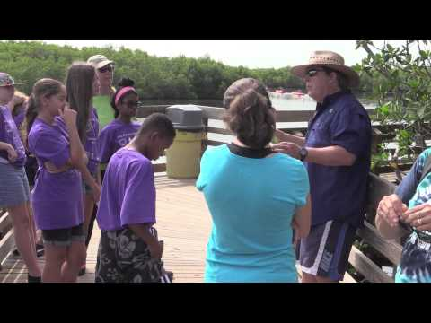 HCC Kids/Teens Camps -  ENVIRONMENTAL SCIENCE GRADES 7-10