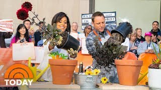 Summer Gardening Tips With George Oliphant | TODAY