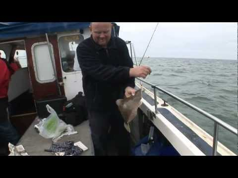 Blue Mink Plaice -- Charter Boat Fishing