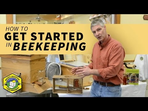 Tips for Getting Started in Beekeeping
