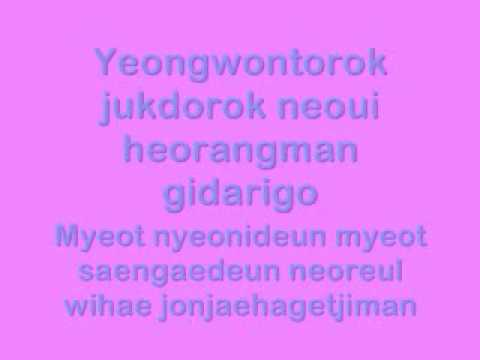 Insomnia (Korean Version) Wheesung Lyrics