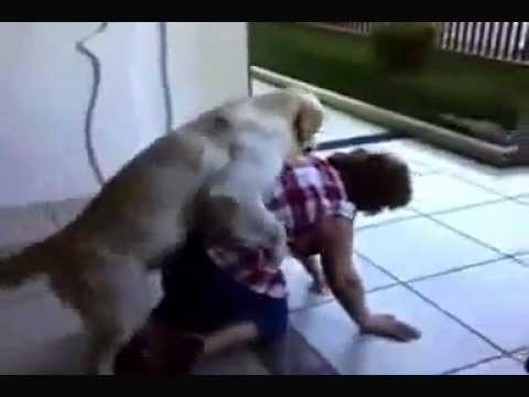Un Cane Violenta Una Donna - Video Divertente video