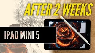 IPad Mini 5 artist review - 2 weeks later!