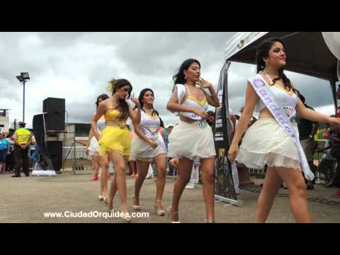 Opening Reina del Carnaval Pi�as