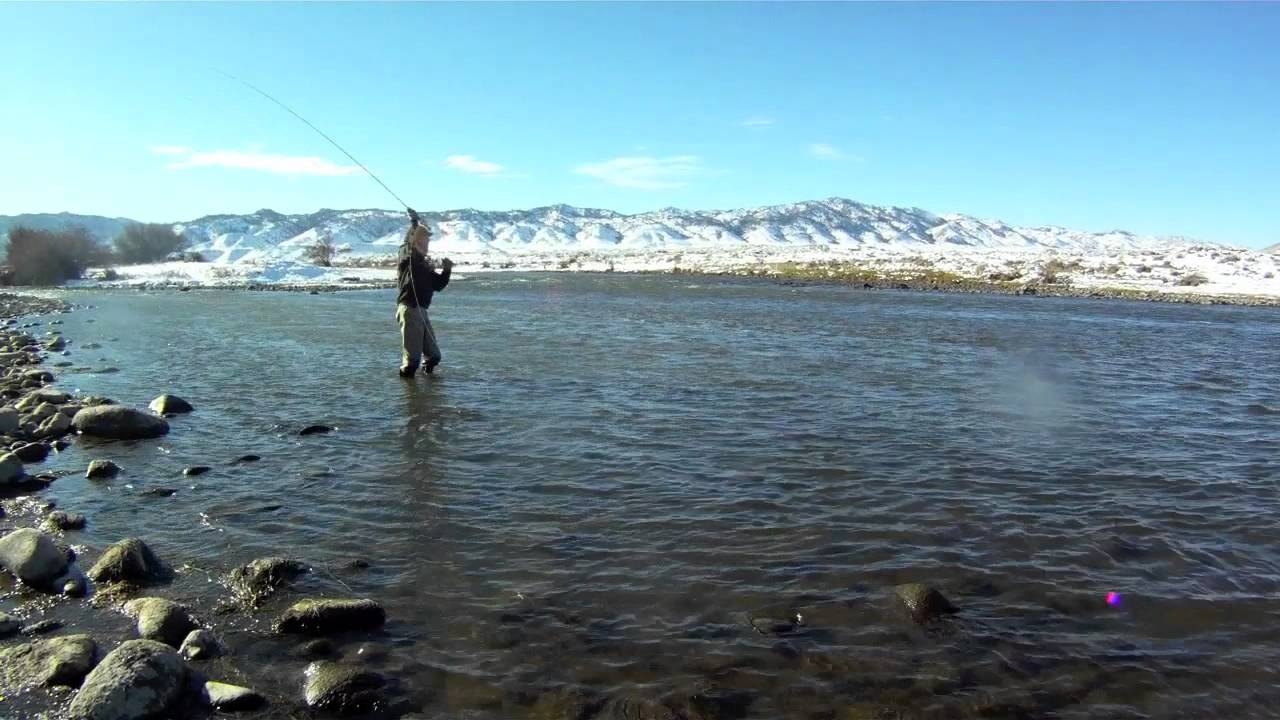 Miracle mile brown trout fly fishing youtube for Miracle mile fishing report